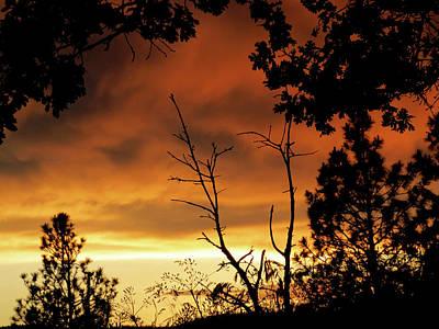 Photograph - Oregon Sunset by Jacqueline  DiAnne Wasson