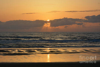 Photograph - Oregon Sunset by Tanya Searcy