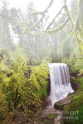 Photograph - Oregon Waterfall Forest Moss Landscape by Andrea Hazel Ihlefeld