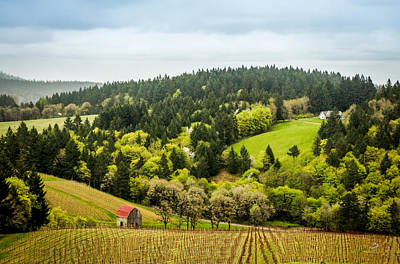 Oregon Wine Country Art Print