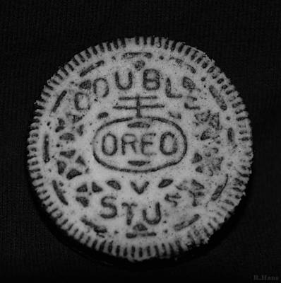 Photograph - Oreo In Matte Finish by Rob Hans