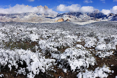 Organ Mountains With Snow Art Print by Patrick Alexander