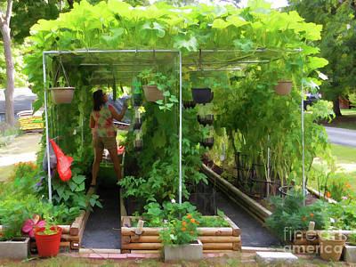 Painting - Organic Gardening 2 by Lanjee Chee