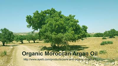 Moroccan Mixed Media - Organic Moroccan Argan Oil   by Ayelli