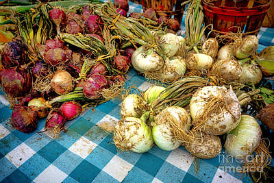 Vegetable Stand Photograph - Organic Onions At A Farm Market by Olivier Le Queinec