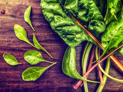 Art Print featuring the photograph Organic Rainbow Chard by TC Morgan