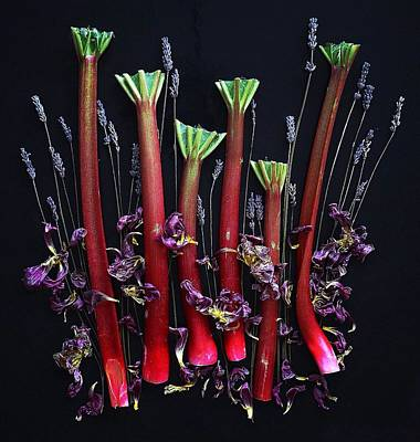 Photograph - Organic Rhubarb Lavendar Delight by Sarah Phillips