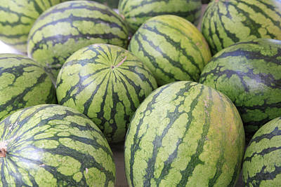 Watermelon Photograph - Organic Watermelon by Wendy Connett