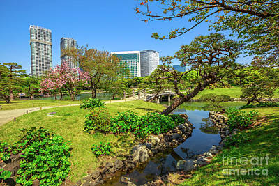 Photograph - Oriental Gardens Tokyo by Benny Marty