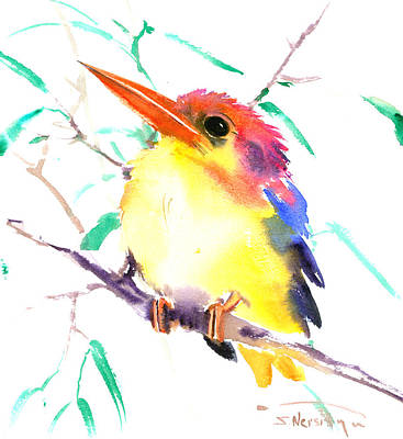 Kingfisher Drawing - Oriental Kingfisher by Suren Nersisyan