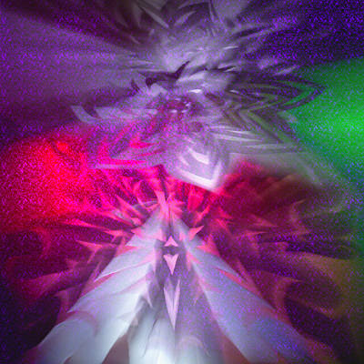 Photograph - Origami Outburst by Adria Trail