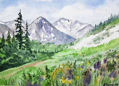 Painting - Original Watercolor - Colorado Mountains And Flowers by Cascade Colors
