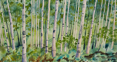 Painting - Original Watercolor - Summer Aspen Forest by Cascade Colors