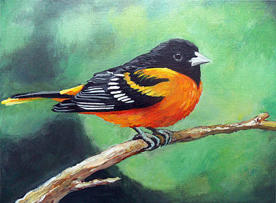 Small Size Painting - Robine - Oriole Baltimore  by Adriana Vasile