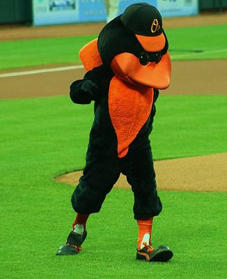 Photograph - Orioles Mascot by Christopher James
