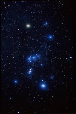 Betelgeuse Photograph - Orion Constellation by John Sanford
