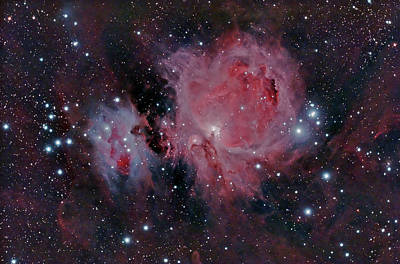 Photograph - Orion Nubula by Dale J Martin