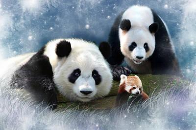 Red Panda Digital Art - Orion Ophelia And The Oddball by Julie L Hoddinott