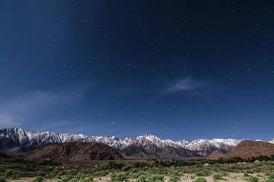 Photograph - Orion Over Mt. Whitney by Margaret Pitcher