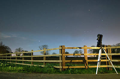 Photograph - Orion, Standing In A Field by Robert Lane
