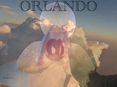 Orlando In Our Mind Art Print