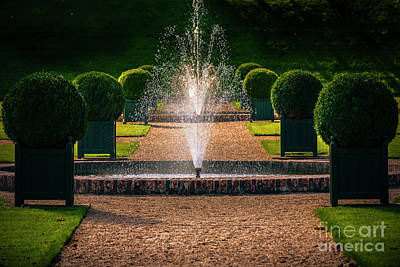 Photograph - Ornamental Garden With Fountain by Heiko Koehrer-Wagner