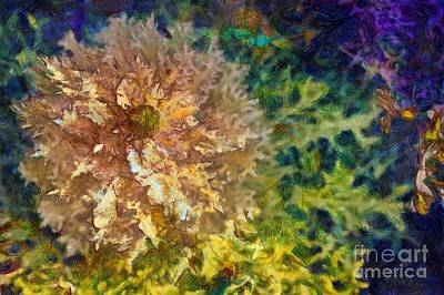Digital Art - Ornamental Kale by Eva Lechner