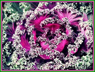 Photograph - Ornamental Kale by Sarah Loft