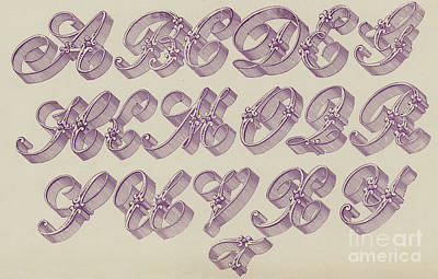 Flourishes Drawing - Ornamental Riband by English School