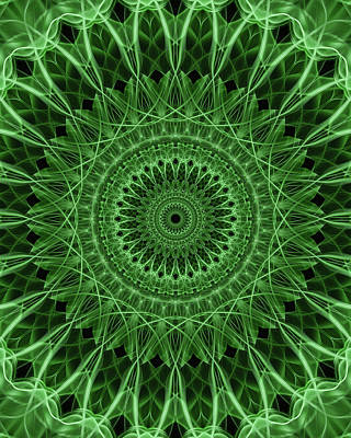Digital Art - Ornamented Mandala In Green Tones by Jaroslaw Blaminsky