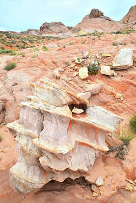 Photograph - Ornate Rock In Wash 4 Of Valley Of Fire by Ray Mathis