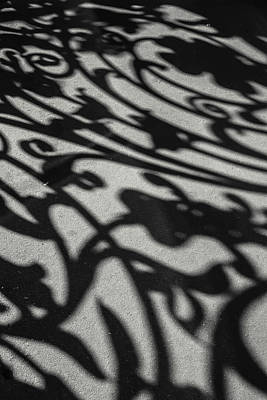 Photograph - Ornate Shadows by KG Thienemann