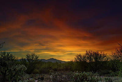 Mark Myhaver Rights Managed Images - Oro Valley Sunset h02 Royalty-Free Image by Mark Myhaver