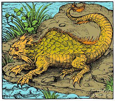 Orobon, Monster Fish, 16th Century Art Print
