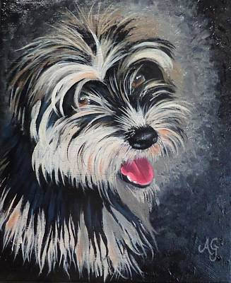 Painting - Oscar by Anne Gardner