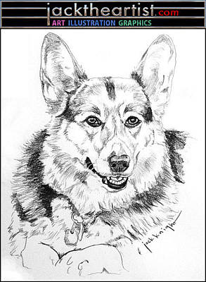 Drawing - Oscar by Jack Knight