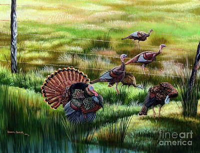 Osceola Turkeys- Still The Boss Art Print by Daniel Butler