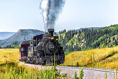 Photograph - Osier Bound 484 by Susan Warren