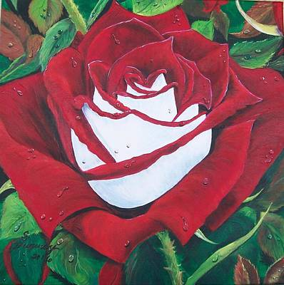 Painting - Osiria Rose by Sharon Duguay