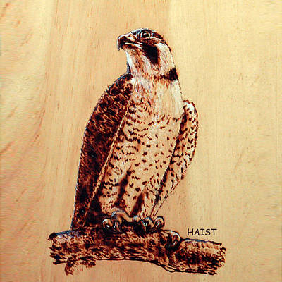 Pyrography - Osprey 2 Pillow/bag by Ron Haist