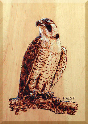 Pyrography - Osprey 2 by Ron Haist
