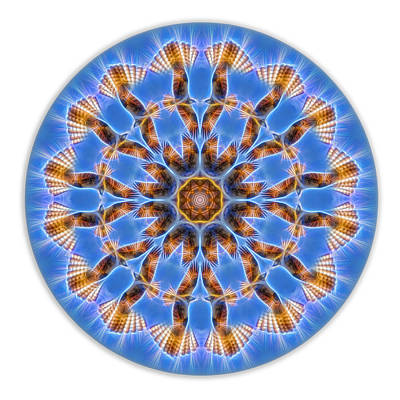 Digital Art - Osprey Energy Mandala by Beth Sawickie