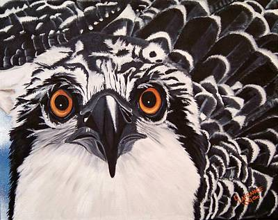 Osprey Painting - Osprey Eyes  by Debbie LaFrance