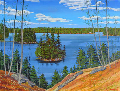Painting - Osprey Island by David Gilmore