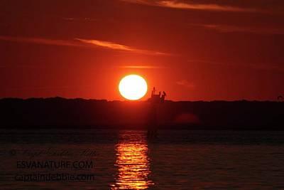 Photograph - Osprey Nest Sunset by Captain Debbie Ritter