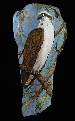Painting - Osprey On Watch by Nancy Lauby