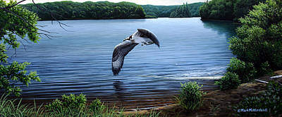 Osprey Over Clear Lake Art Print by Mark Mittlesteadt