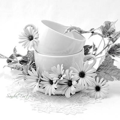 Photograph - Osteospernum Daisy Flowers Still Life by Sandra Foster