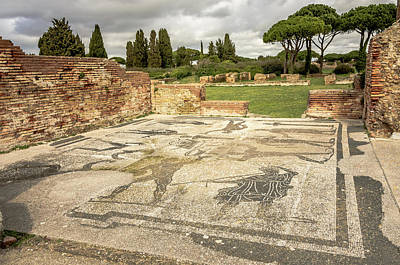 Photograph - Ostia Antica - Athlete Mosiacs by Debra Martz