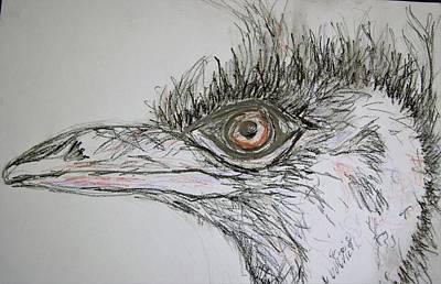 Ostrich Mixed Media - Ostrich by Aimee Mann